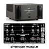 ATI AT6005 300W X 5 Ch Signature Amplifier