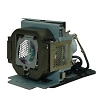 BenQ 5J.J1Y01.001 Projector Rplcmnt Lamp for BenQ Sp830