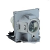 BenQ 5J.J2D05.011 Projector Rplcmnt Lamp for BenQ Sp920P